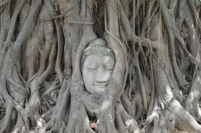 ayutthaya-una-mañana