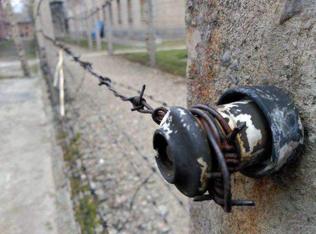 holocausto-judio-peliculas-viaje-polonia