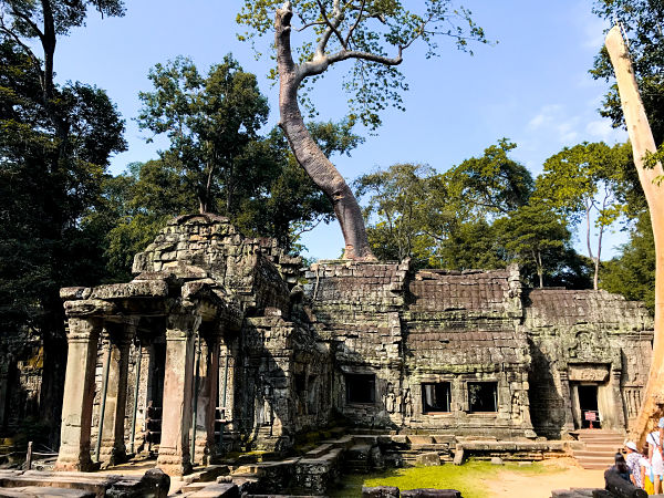 ta-prohm-templos-angkor-lara-croft