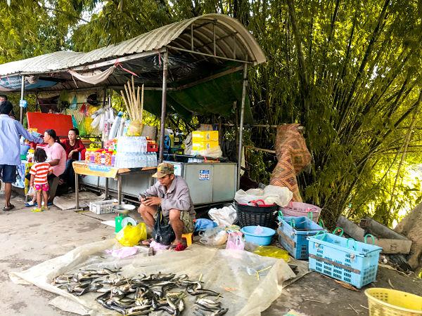 wat-kor-village-battambang