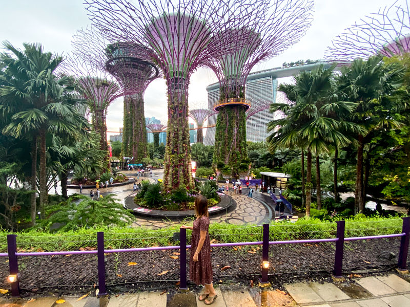gardens-by-the-bay-supertrees